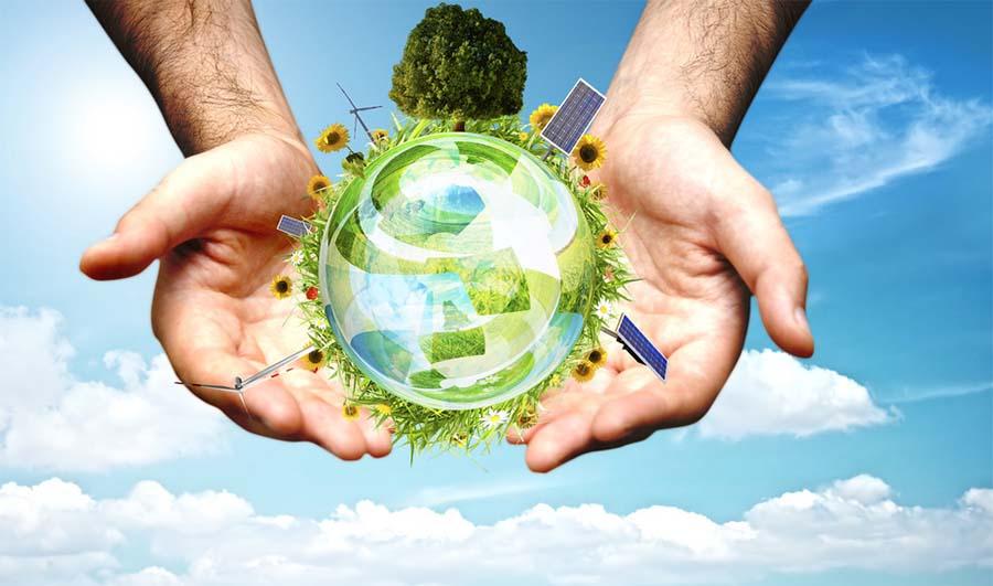 Energia rinnovabile da biomasse