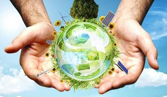 I fondamenti per salvaguardare ambiente