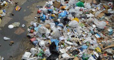 Roma dovra essere liberata dai rifiuti in una settimana