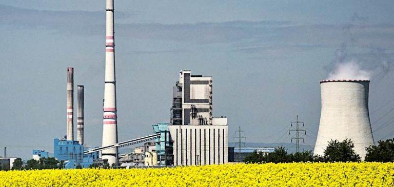 Cosa sono i biocarburanti?