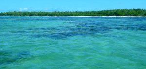 Mauritius la petroliera incagliata si e spezzata