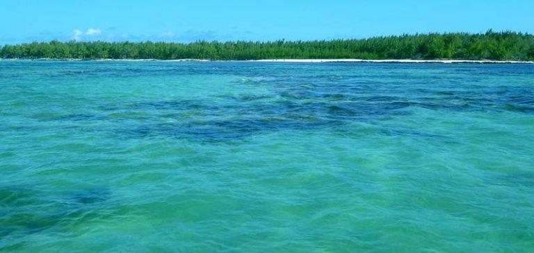 Mauritius, la petroliera incagliata si è spezzata