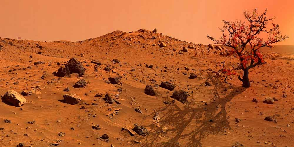 I microbi terrestri sopravvivono su Marte